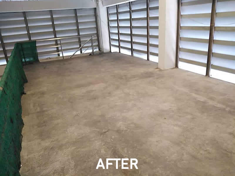 Worsehouse-cleaning-After